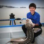 Guided Sturgeon Fishing Trips in San Francisco