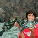 Fishing for Lingcod on San Francisco Bay