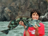 Little Boy Caught rockfish in San Francisco Bay