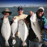 Guided Fishing Charters in San Francisco