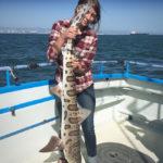 Leopard Shark Fishing Trip on San Francisco Bay