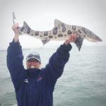 San Francisco Bay Leopard Shark Fishing