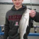 Striped Bass Caught off the shore of San Francisco