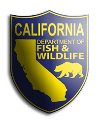Purchase a Fishing License in California