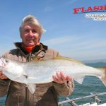 White Sea Bass Fishing Charters in San Francisco Bay