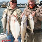 California Halibut Fishing Charters in San Francisco